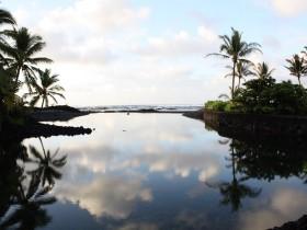 HAWAII VISION CLINIC
